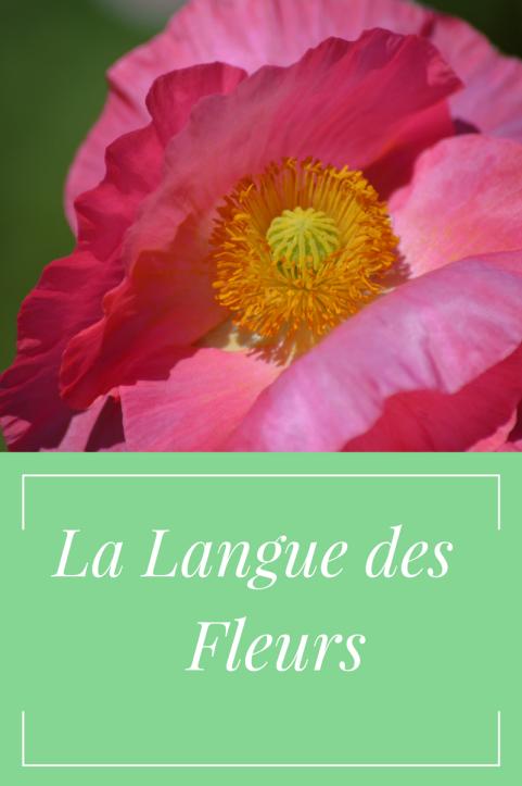 La Langue des Fleurs (1)