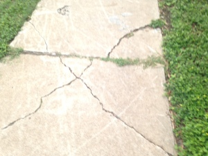 cracked sidewalk