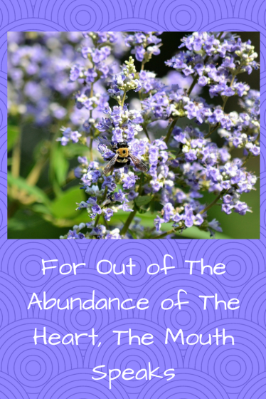 For Out of The Abundance of The Heart, The Mouth Speaks